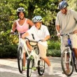 Healthy diverse family bike riding together in park — Stock Video #18518623