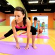 Multi Ethnic Fitness Class — Stock Video #18544541
