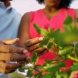 Hands Only Ethnic Couple Holding Flowers - Stockfoto