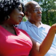 Video Stock: Mature AfricAmericCouple Retirement Home Garden