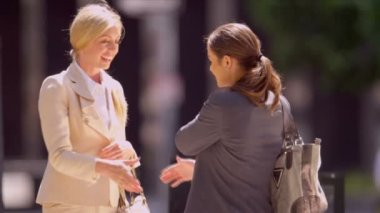Females shaking hands on business — Stock Video