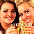 Portrait of two beautiful & elegant girls with champagne at a party - Stock Photo