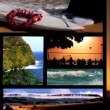 Collection of images from Hawaii - Foto de Stock