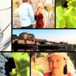 Collection of vineyard and wine footage - Stock Photo