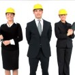 Stock Video: Construction architect team posing isolated on white