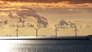 Più turbine eoliche sulla costa della danimarca al tramonto — Video Stock