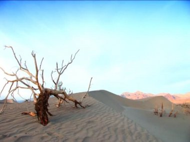 Landscape features of Death Valley — Stock Video