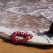 Surfboard & tropical flower lei at waters edge on a tropical beach — Stock Video