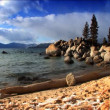 Scenes of winter & snow from the shores of Lake Tahoe — Stock Video