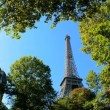 Eiffel Tower in Paris,  France, framed by trees - Stock Photo