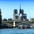 Notre Dame cathedral, from a cruise on River Seine  — Stock Video
