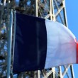 French national flag in front of Eiffel Tower — Stock Video #19460195
