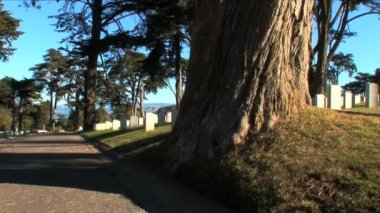 American memorial Cemetery in San Francisco — Stock Video