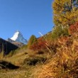 Fall in alpine meadow Zermatt with hikers & Matterhorn — Stock Video #19490341