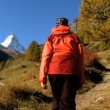 Fall in an alpine meadow  Zermatt  with female hiker & the Matterhorn - Stock Photo