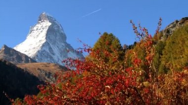 Fall in an alpine meadow Zermatt with the Matterhorn — Stock Video