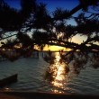 Sunset at the end of the jetty. — Stok video #19530049