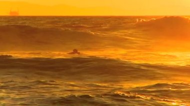 Surfing waves at sunset — Stock Video