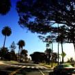 Point-of-view with fish-eye driving along the Pacific Coast - Stock Photo