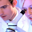 Stock Video: Young caucasihealthcare staff working with laboratory equipment
