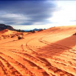 Vehicle tracks on sand dunes in national park - Stock Photo