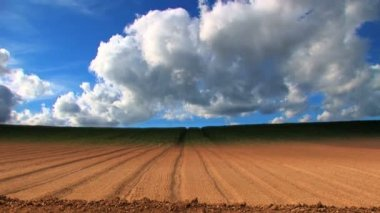 Dramatic time-lapse of clouds & crops growing in a field — Stock Video