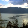 Floating nets of a salmon farm on a nordic fjord — Stok Video #20013703