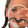 Cute african american schoolgirl examines a plastic spider — Stock Video