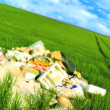 Concept shot of discarded rubbish (trash) polluting a clean environmental field - Stockfoto