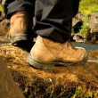 Stock Video: Feet of athletic hiker walking beside glacial river