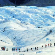 Stock Video: Team of climbing largest glacier in Europe