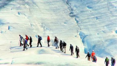 Team of preparing to climb the largest glacier in Europe — Stock Video