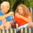 Attractive senior couple enjoying outdoor leisure time together — Stock Video #21036657