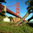Beside Golden Gate Bridge - Stock Photo