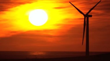 Sunset Silhouette of Wind Turbine — Stock Video