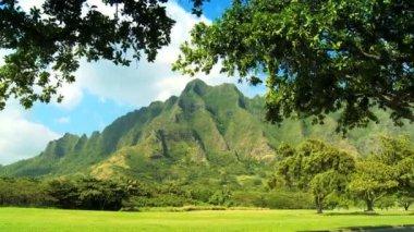 Na Pali Cliffs in Hawaii — Stock Video