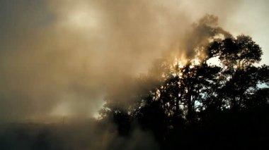 Volcanic Steam & Sunlight Effects — Stock Video