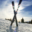 Stock Video: Downhill Skis