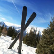 Crossed Carver Downhill Skis — Stock Video #21212611