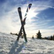 Stock Video: Crossed Downhill Skis