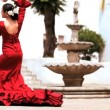 Traditional Spanish Flamenco — Stock Video #21559489