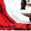 Dramatic Spanish Flamenco Dancing - Stock Photo