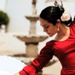 Beautiful Spanish Flamenco Dancer — Stock Video #21560083