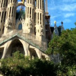 Sagrada Familia Church, Spain — Stock Video #21560727