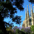 Sagrada Familia Church, Spain — Stock Video #21561833