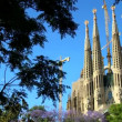 Sagrada Familia Church, Spain — Stock Video #21562089
