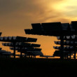Solar Energy Panels in Silhouette - Stock Photo