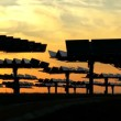 Stock Video: Solar Energy Panels in Silhouette