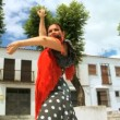 Lady Dancing Traditional Flamenco - Stock Photo