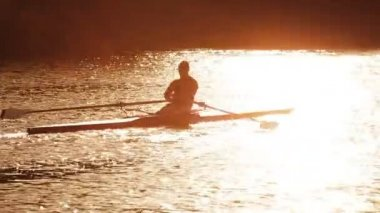 Lone Oarsman on the River — Stock Video